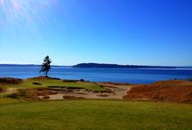 Explore Golf / The U.S. Open is coming to beautiful Chambers Bay in Pierce County, Wash. in 2015. Explore golf in Pierce County - maybe even play it before the pros do! / by Travel Tacoma + Pierce County