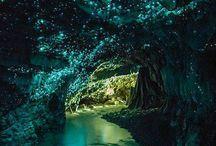 New Zealand / by agu fuenzalida