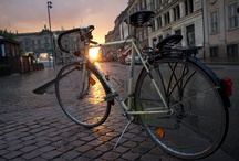 Bicicleta / I was practically born on a bike...if there hadn't been a snow storm, my mother would probably have ridden her bicycle to the hospital to give birth to me!  / by Nina Ⓥsberg