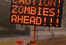 zombies / basically i fangirl over walking dead, comics and show alike. / by Ashera Buhite