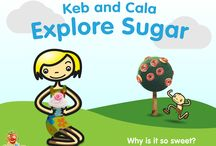"""Educate Children About Sugar / """"What is the difference between the sugar in a cookie and the sugar in an apple?"""" a 7 year-old boy asked me. Instead of just answering his question, we created an eBook for both children and their parents.  / by Smash Your Food"""