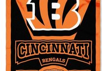The Bengals / Look no further for merchandise, player and game information, and fun facts about the Cincinnati Bengals! / by Downtown Cincinnati Inc.
