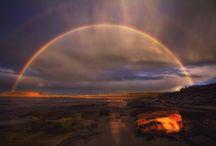 nature light  / by Brad Thomas