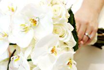 Weddings / by Hyatt Regency Monterey Hotel And Spa