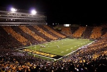 Iowa Hawkeye inside and out / by Kimberly Eylers