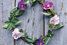 Flowers / by Becky Rardin