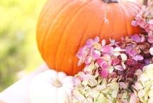 Autumn Fever / by Iulia Marcu