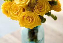 Flowers / by kandice petorak