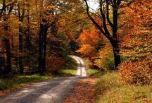 Country Roads Take Me Home / by Melissa Barr Campbell