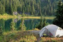 Camping / by Andrea Stephens