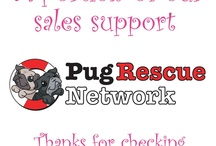 House of Lulu / by Pug Rescue Network