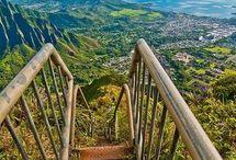 Hawaii / by Madison M