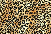 Leopard Print Fabrics / by Carrie Dunn