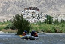 Leh Ladakh Tour Packages / Ladakh is a unique experience, a journey of the soul to the land of high passes where you can feel a palpable spiritual presence in the forlorn desolate heights.  / by Devraaj Negi