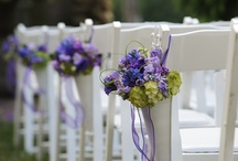 Weddings/Events / by Graylyn Estate
