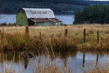 Barns / by Effie Smith