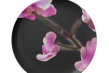 My Style / by aspen rose arts