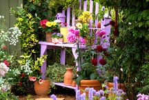 Gardening and Outdoor Decorating / by Tracie Schuler