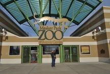 How do YOU zoo? / by Mesker Park Zoo & Botanic Garden