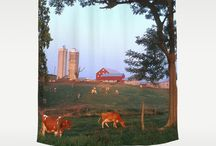 Shower Curtains / Various shower curtains for your home. / by AlleyCatshirts Zazzle