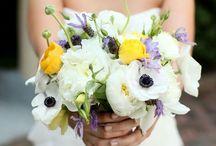 Flowers / by Kim Nguyen