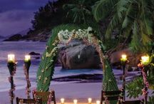 Wedding everything / Fancy  / by Jordan Abels