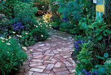 gardening / by Nancy Wilson
