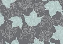 Patterns I Love / by Kate Dwyer
