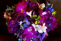 Flowers / by Nina Murray