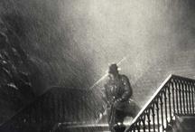 Rain / by Ann Butler
