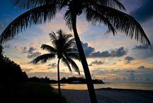 Florida Keys / by Ron Brown