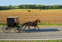 Amish Country / by June Mackey