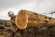 Meet The Timber Kings / Get to know the hard-working stars of HGTV Canada's newest hit show. / by Timber Kings