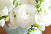White / white and flowers and event details / by Laurie Arons