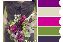 Color Themes / by Katy Rizk