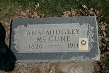 Family History / by Stefani McCune