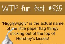 FUN facts / by Susan Strohl