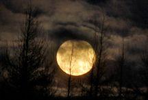 moon noir / by Borah Pavick