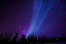 ~~ Northern Lights ~~ / by Terri Bleakney