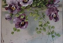 Images-Floral / by Joyce Gleason