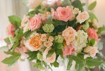Flowers / by Satoko Umemiya