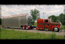 trucks / by Andrea Brazeal