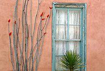 NEW  MEXICO / by Jane Barreda