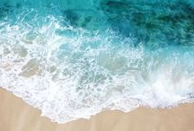 Oceans & Beaches / by PaulsRarePoultry.com
