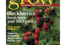 Books & Other Resources / These issues may only come once a year, but boy, are they worth it! Our special issues cover a wide range to give you information on a variety of topics. / by Fine Gardening