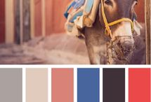 Inspiring Color Palettes / by Marty Ratlief