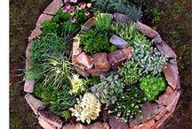 gardening / by Katie Loucks