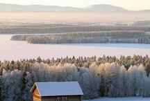 Winter / by Aya Hya