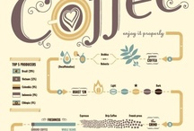 { The Infographics }  / by Vibeke Hoie