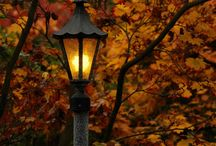 LE Loves Autumn + Autumn Style / Autumn images / by Lands' End UK - Clothing Retailer